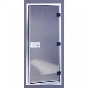TYLO 60G Steam Room Door